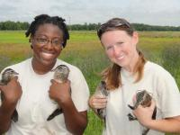 SCA interns tagging ducks with the Fish and Wildlife Service