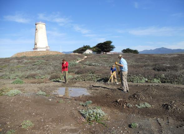 Nothing like raking some rocks in the shadow of a lighthouse.