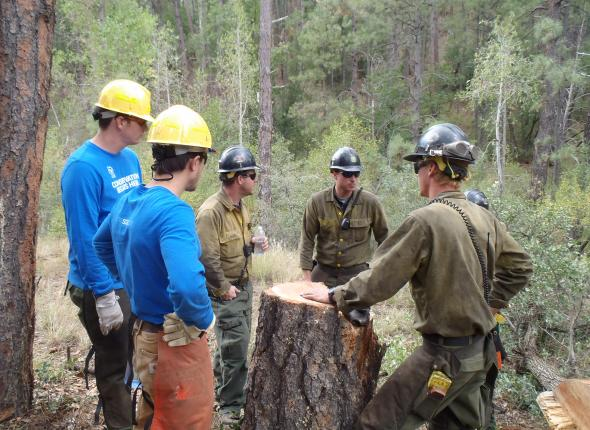 VFC members discussing project details with Prescott National Forest's fire fighters.