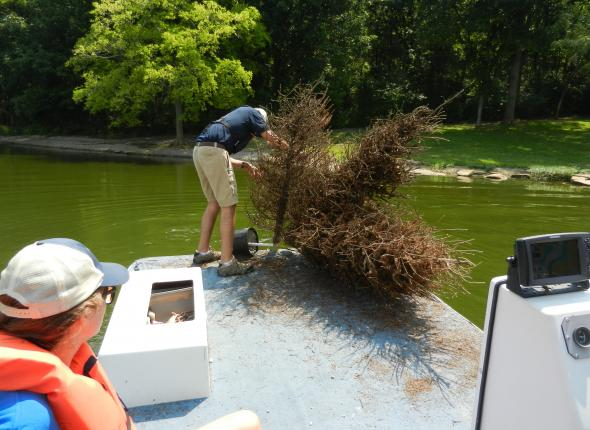 Roy putting the fish attractors into the water