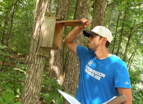 Kevin checks for Eastern Bluebirds.