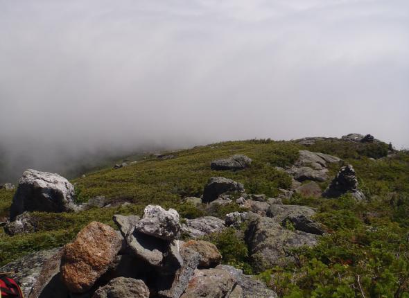 A white view of the White Mountains