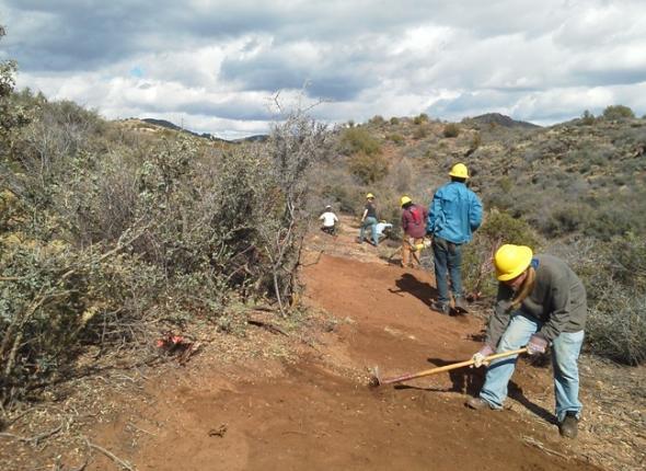 Cutting a little trail