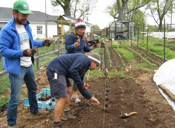 Nashville Food Project: Leafy greens garden bed almost complete!