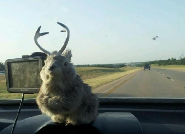 The Jackalopes headed to Kansas!