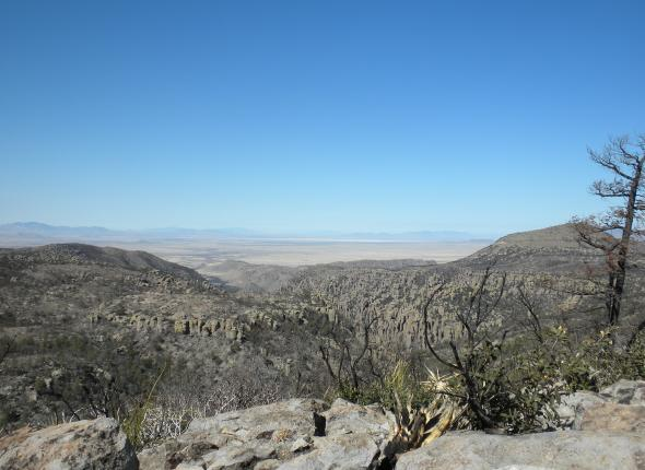 Some Chiricahua NM burn area