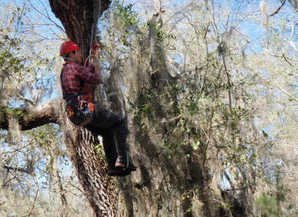 Eric climbing!