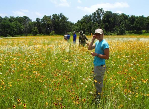 Sara enjoying the marsh wildflowers.
