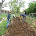 BEFORE Nashville Food Project: Sophie, Leah and Michael rip crab grass out from the cucumber garden bed.