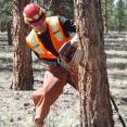 VFC 2 Colorado Fire Camp Saw 212 Training 2013